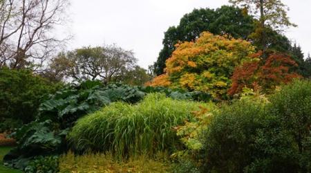 The Royal Botanic Garden in Edinburgh, Scotland.